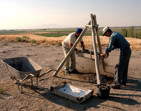 Representative image of the 'Çatalhöyük Area TP Zooarchaeology' project
