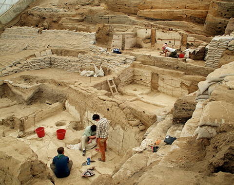 Representative image of the 'Çatalhöyük Zooarchaeology' project