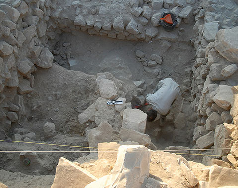 Representative image of the 'Dhiban Excavation and Development Project' project