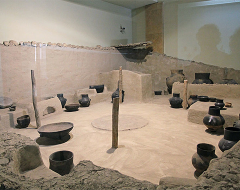 Representative image of the 'Köşk Höyük Faunal Data' project