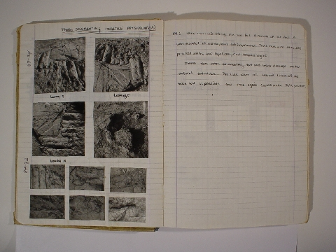 Preview of Trench Book AC VIII:18-19