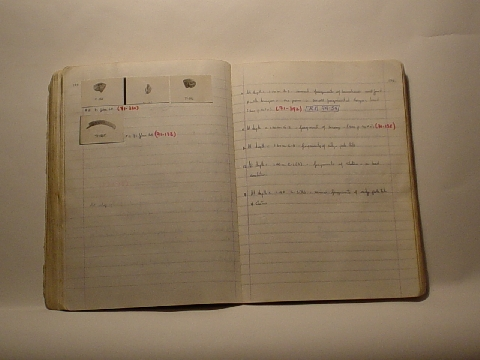 Preview of Trench Book EN II:178-179