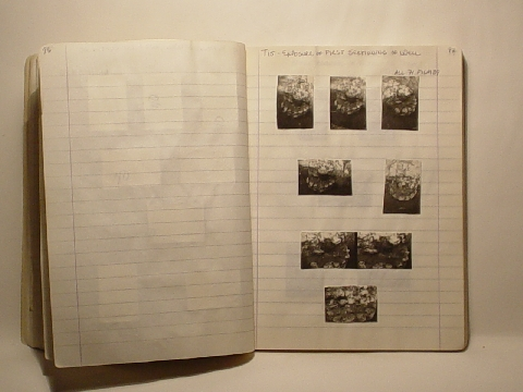 Preview of Trench Book JM II:96-97