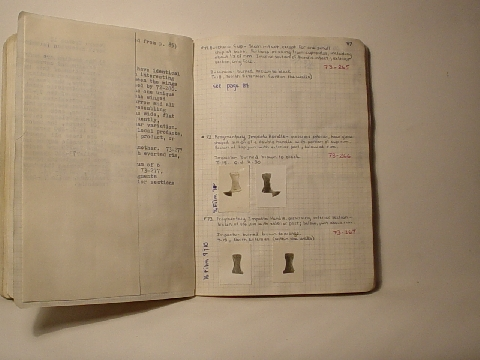 Preview of Trench Book JN II:86-87