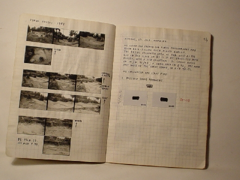 Preview of Trench Book LRL III:42-43