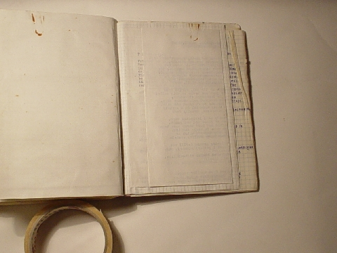 Preview of Trench Book LRL I:376-377