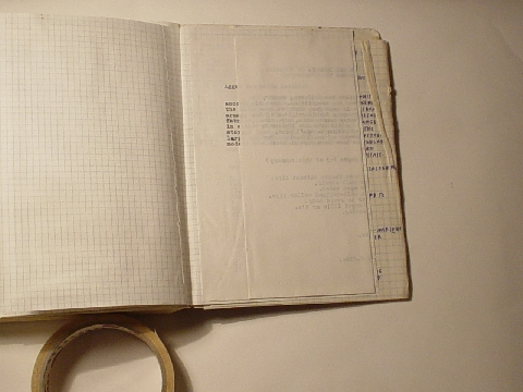 Preview of Trench Book LRL I:380-381
