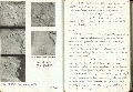 Thumbnail of Trench Book AAC I:20