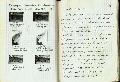 Thumbnail for Trench Book JB V:98-99