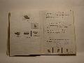 Thumbnail for Trench Book ER I:220-221